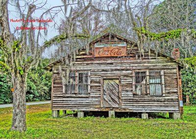 Low Country Long Gone White Oak