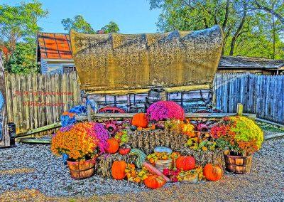 Fall, Flowers, Old Stuff & Bob's Pumpkin Crack