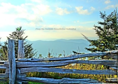 Split Rail Vision From the Top